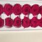 4-5cm永生玫瑰